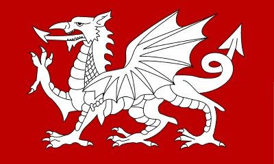 White Dragon flag of the English