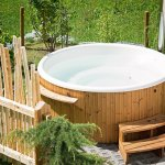HOT TUBBING OF EXPERTS: NEW PRACTICE DIRECTION