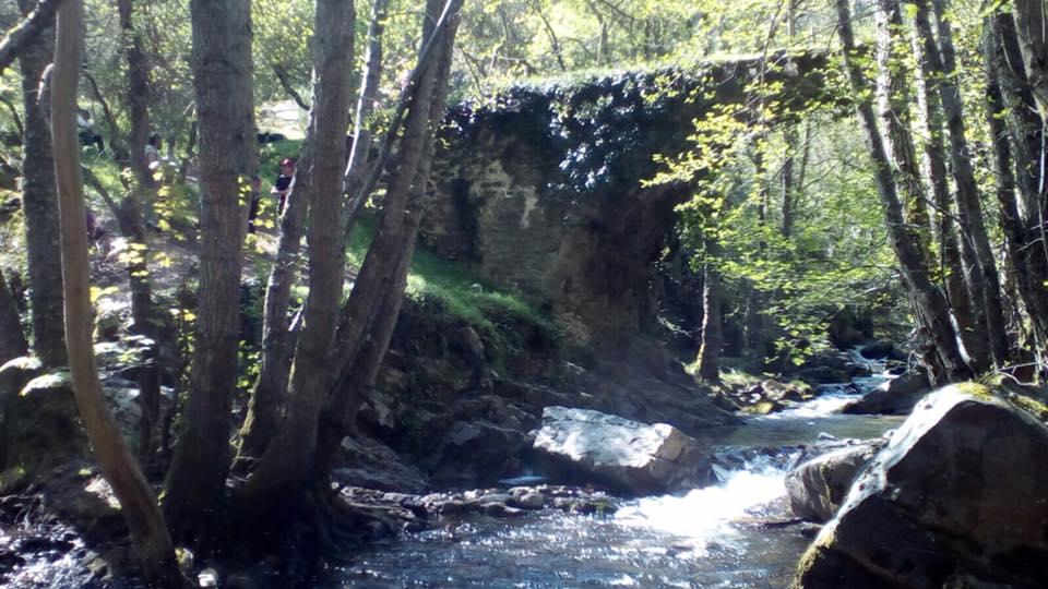 Puentes Malpaso 9
