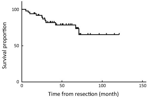 small resolution of figure 4 overall 5 year survival rate of 47 patients who underwent totally laparoscopic treatment