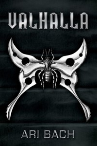 Valhalla book cover