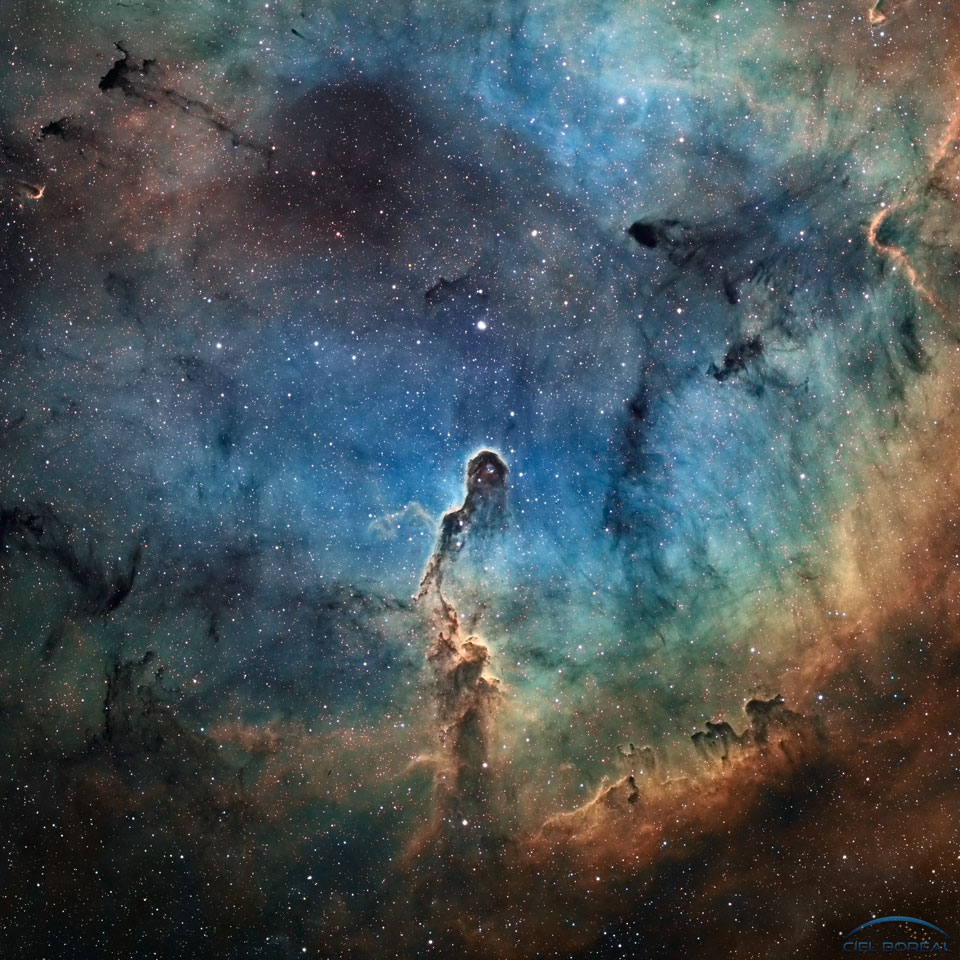 "just–space: "" The Elephants Trunk in IC 1396 : Like an illustration in a galactic Just So Story, the Elephants Trunk Nebula winds through the emission nebula and young star cluster complex IC 1396, in the high and far off constellation of Cepheus. Of..."