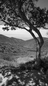cjparis_Aliso-Canyon_08