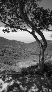cjparis_Aliso-Canyon_08