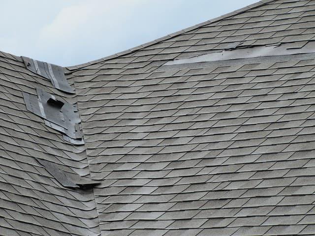 Storm Damaged Roof Shingles