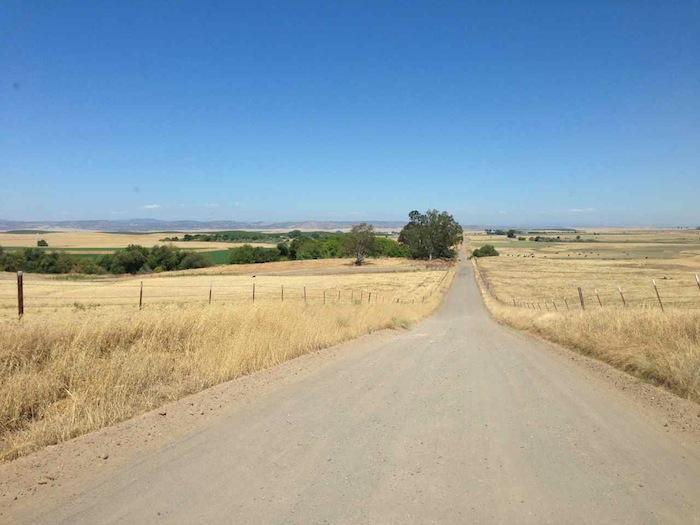 Carter Road