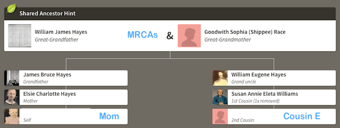 Mom and Cousin E - AncestryDNA Hint