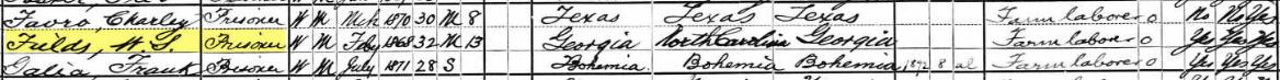 William Sanford Fields, 1900 US Census