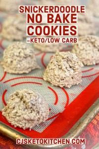 Snickerdoodle NO BAKE Cookie Recipe