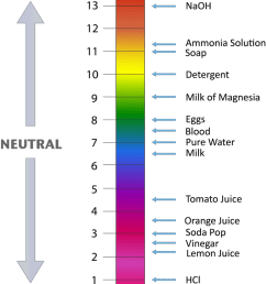 a ph scale goes from 1 to 14 numbers are shown with the ph of some common substances a value of 7 is neutral the strongest acids are at the low end  [ 800 x 1004 Pixel ]