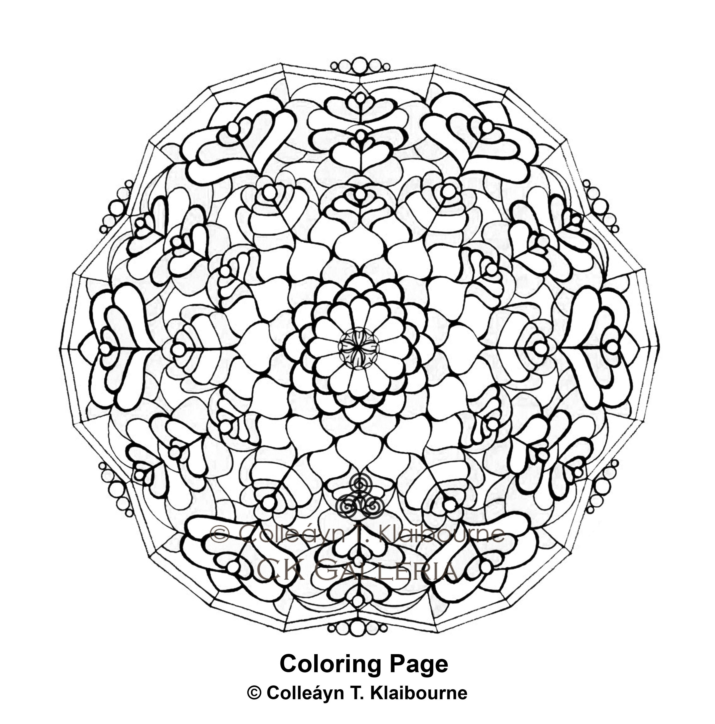 Sand Dollar Coloring Book Coloring Pages