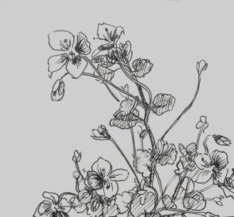 Ereprijs, fineliner in schetsboek, 2017