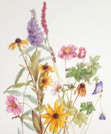 Najaarsbloeiers, kleurpotlood op passepartout karton, 47x35 cm, 2019