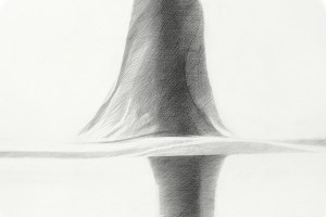 Fin I detail ©Brandt 2011