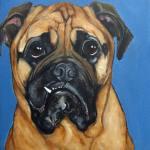 Pet Portrait | Jake | Claire Dunaway Studios