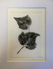 Ivy, monotype, unique, 12x17cm, £2