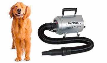 Phon e soffiatori per cani professionali per la toelettatura