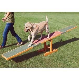 passerella a dondolo per addestramento dei cani