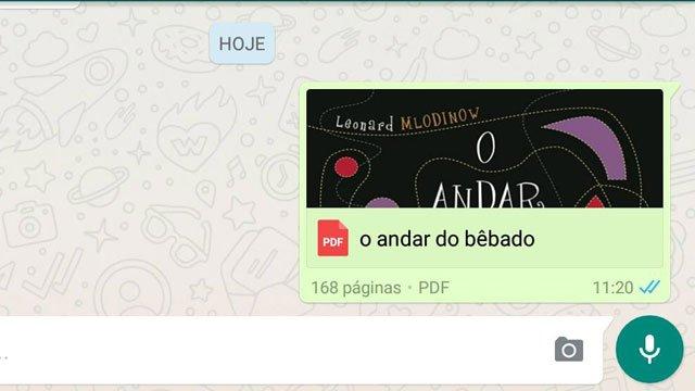 WhatsApp-DOC2