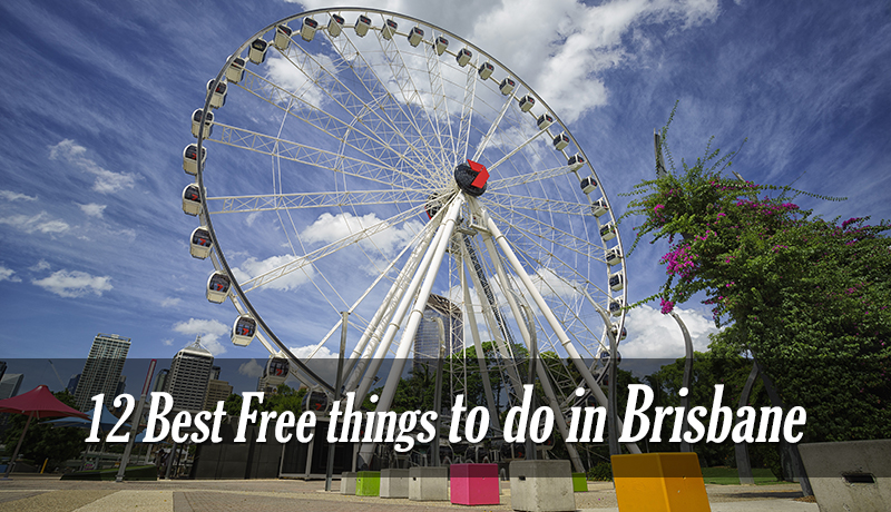 12 Best Free things to do in Brisbane