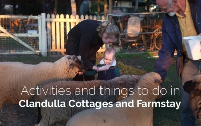 Activities and Things to do in Clandulla Cottages and Farmstay
