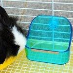 mkono Plat et bol Gamelle d'eau alimentaire en plastique Double utilisation Boîte Petit Animal Pet Mangeoire pour lapin cochon Galesaur Hamster (couleur aléatoire)