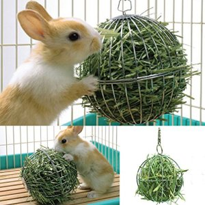 Balle de doublure acier inoxydable Boule Animal Rat Hamster Lapin