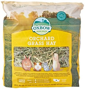 Orchard Grass Petlife Oxbow Herbe pour rongeurs 1,13 kg