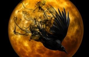 Raven Creepy