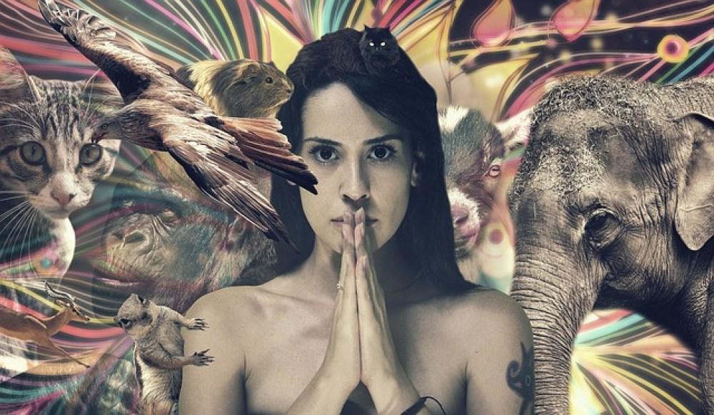 shamangirl-and-animals