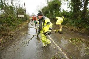 Tree down at Kilmaley