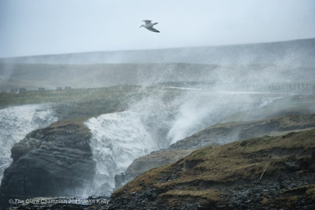 A lone seabird does battle with the strong wind's against a backdrop of uprising spray near St George's Head, Kilkee on Monday afternoon. Photograph by John Kelly.