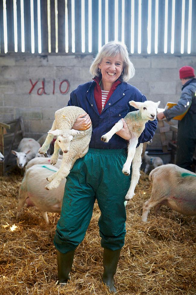 Shepherd Day