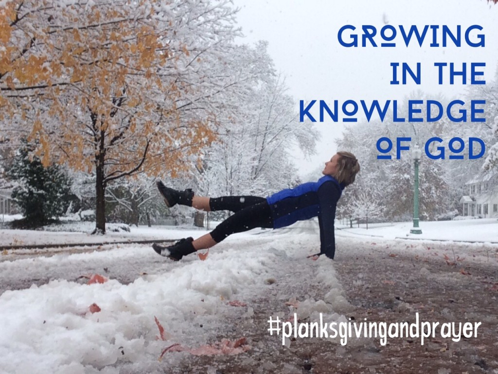 Planksgiving and Prayer Monthly Challenge : Week 3