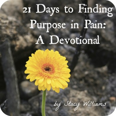 21 Days to Finding Purpose in the Pain: A Devotional (Guest post on www.peak313.com)