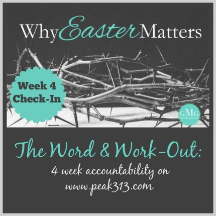 The Word and Workout: Check-in: Week 4/Final : peak313.com