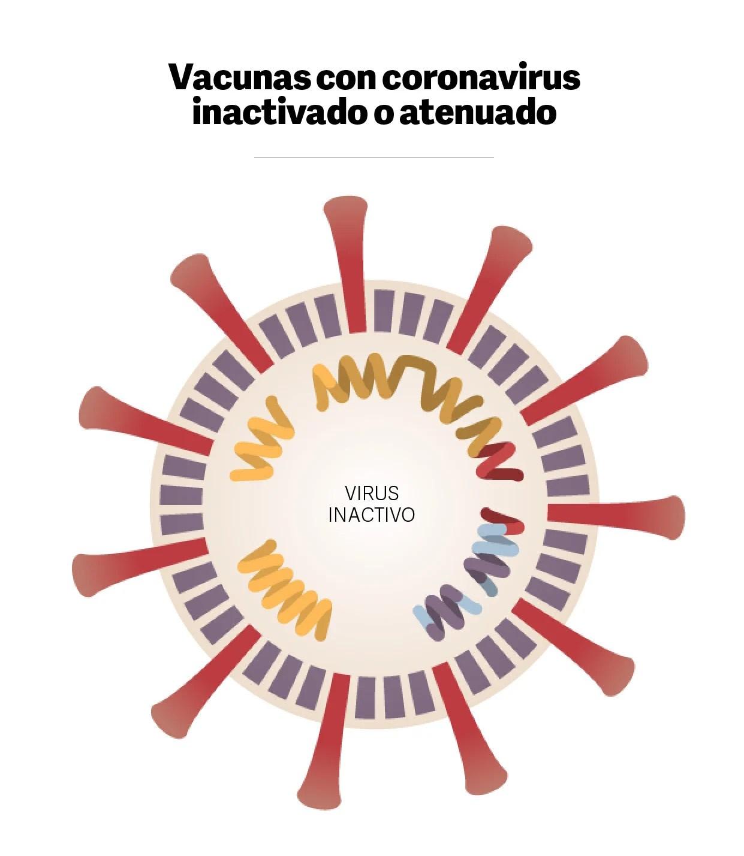 NYT-Vaccine tracker 06