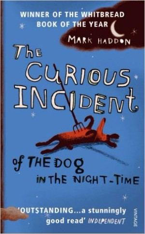Books to read in English - The Curious Incident of the Dog in the Night-time