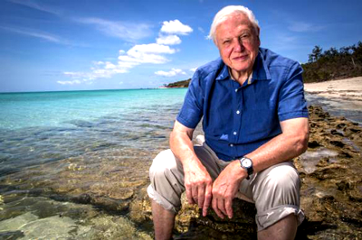 David Attenborough sitting by the sea