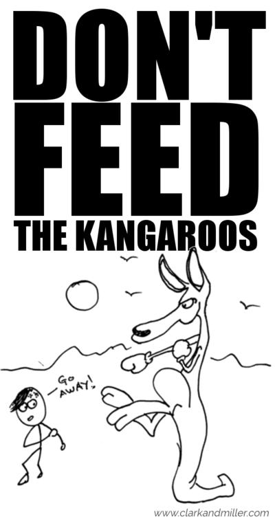 Don't feed the kangaroos: boxing kangaroo and man