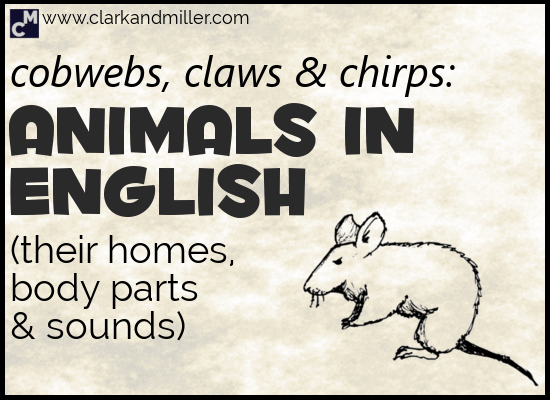 Animals in English - Plus Animal Body Parts, Sounds and Homes