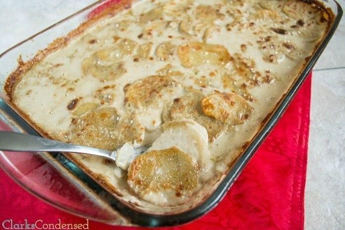 cauliflower-potato-gratin