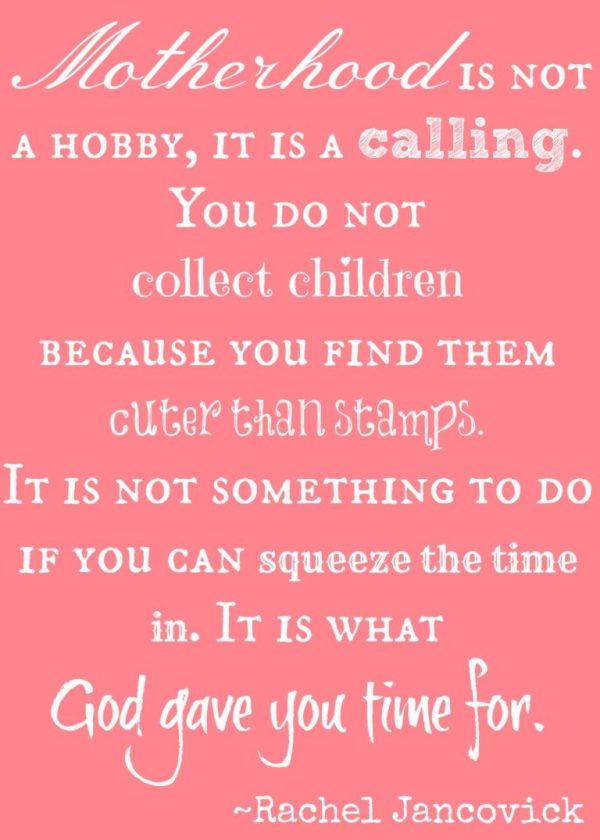 Motherhood is not a hobby