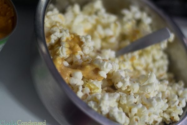skinny-pumpkin-popcorn (9 of 18)