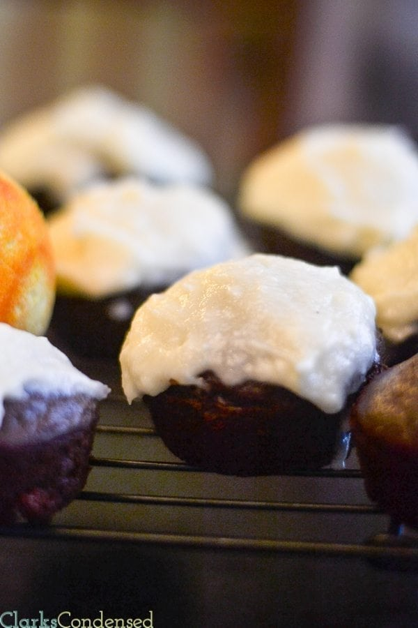 Dark chocolate orange cupcakes with vanilla orange frosting. YUM!