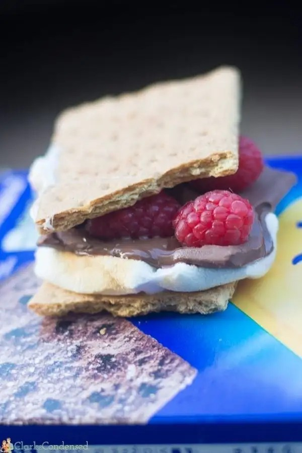 Chocolate raspberry s'mores idea. A fun twist on a traditional s'more!