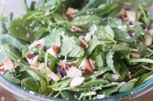 bacon-salad-with-vinagrette (1 of 6)