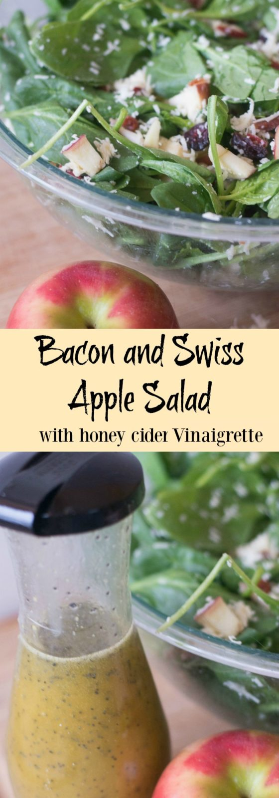 This was a HUGE hit when I brought it to a party - a bacon and swiss apple cider with a tangy honey cider vinaigrette. So tasty!