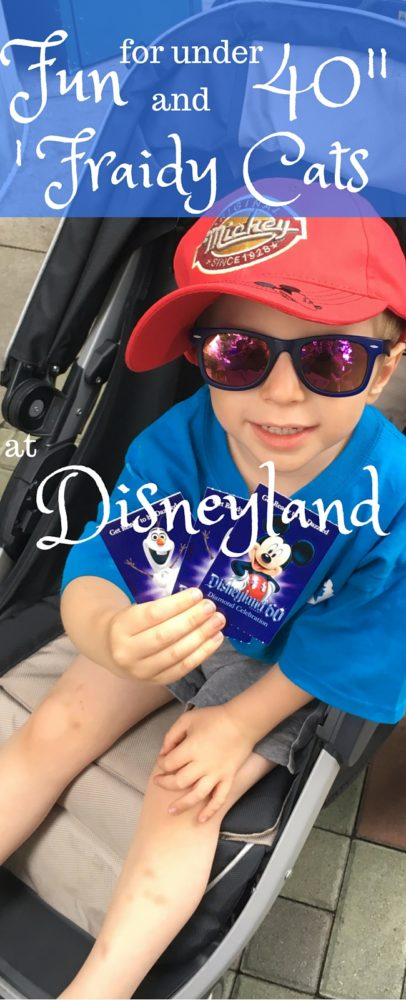 """I wish I had read this before my last trip - fun for under 40"""" and other scared people at Disneyland! via @clarkscondensed"""