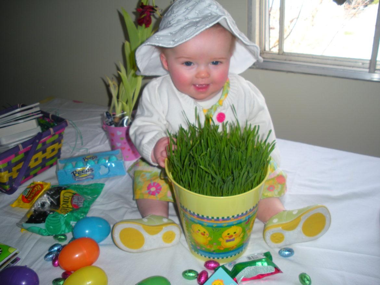 DIY Easter Grass